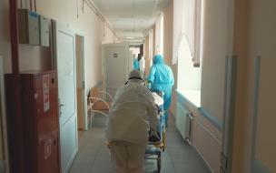 Количество заболевших ковидом в Петербурге упало на 14%