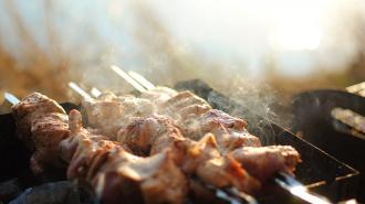 Горожанам назвали популярные места для приготовления шашлыков