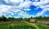 Выходные в Ленинградской области будут жаркими
