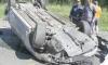 Машина, дорога, кювет: в ДТП в Шушарах погиб водитель