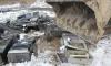 Появились фото жесткого уничтожения игровых автоматов под Томском