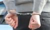 В Петербурге задержали подозреваемого в нападении на профессора Нью-Йоркского университета