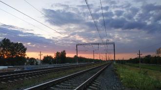 С 23 апреля на Витебском и Балтийском направлениях запустят дополнительные электрички