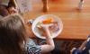 В петербургских садах и школах детям готовят еду из некачественных продуктов
