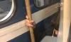 В Сети появились фотографии петербургского «зацепера» в метро