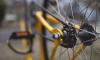 Подросток на скутере сбил велосепедистку