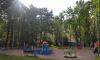 В Невском районе Петербурга установили 327 новых уличных фонарей