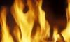 Под Петербургом сгорела база выездного детского сада