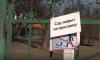 Сады и парки Петербурга закрыли на просушку
