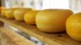 Росконтроль назвал лучший пошехонский сыр