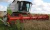 В Ленинградской области началась уборка зерна