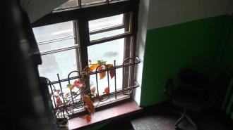 В центре Петербурга из окна четвёртого этажа выпал годовалый ребёнок