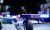 В Невском районе Петербурга задержали наполненный оружием грузовик