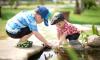 ВЦИОМ опубликовал рейтинг самых важных проблем детства и детей