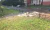 У перекрестка Есенина и Сикейроса из-под земли забил фонтан мутной воды