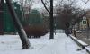Очевидцы: на Каменноостровском горит заброшенное здание