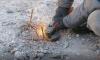 Жителям Ленобласти, лишившимся дохода, предложат новый способ заработка