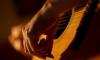 Российские музыканты выступили против закона о концертах