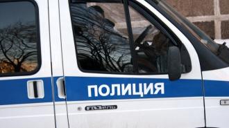 Во Владивостоке шесть девушек жестоко избили сверстницу из-за серебряного браслета и лазерной указки