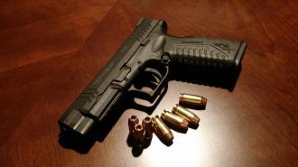Эксперт выступил за ужесточение правил получение разрешения на оружие