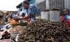 В Конго из-за гусеницы убили 16 человек