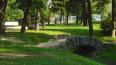 Летом в Петербурге облагородят 50 парковых зон