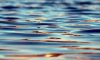 Африканский болельщик утонул в Ленинградской области