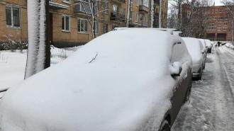 Метель и -24 ожидаются во вторник в Ленинградской области