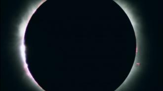 Петербуржцы не смогут увидеть лунное затмение