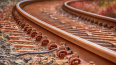 Машинист поезда Луга-Петербург предупредил пассажиров ...