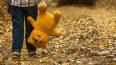 В Гатчине разыскивают пропавшего 11-летнего школьника