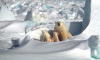 В Северной столицепоявится Совет представительств арктических регионов