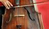 Концерт виолончели в исполнении Александра Князева