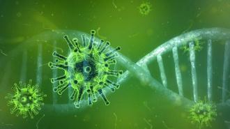 В России зафиксирован 8 371 новый случай заражения коронавирусом