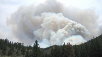 Военные инженеры защитят Ленобласть от пожаров