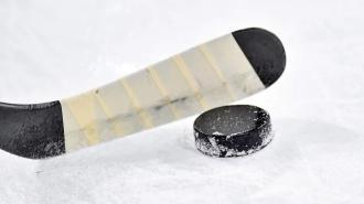 Сборная России проиграла Канаде в финале юниорского ЧМ по хоккею