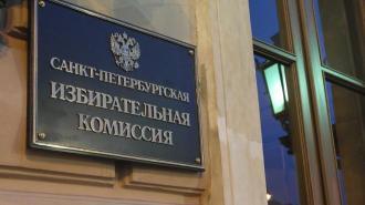 """В ЦИК считают, что в Петербурге """"умышленно дразнят общественное мнение"""""""