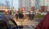 Перепачканный кровью псих кидался на прохожих и машины с ножом на проспекте Карпинского