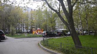 Петербургу пообещали похолодание с 16 мая