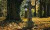В Приморске откопали детский скелет 100-летней давности