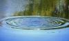Неизвестный мужчина утонул в луже в центре Калуги