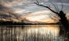 Экологи проверят состояние Суздальских озер