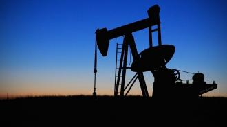 Путин поддержал идею Лукашенко приобрести месторождение нефти в РФ