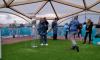 На Заячьем острове открылась выставка Кубка Анри Делоне