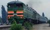 В Подмосковье поезд сбил насмерть трех девочек, возвращавшихся с пляжа