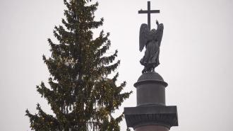 Ёлка на Дворцовой площади нравится лишь 33% петербуржцев
