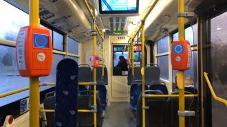 В Петербурге летом не будут курсировать ночные автобусы