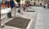 Активисты высадят деревья на площади Восстания