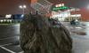 На Пулковском шоссе появился памятник тележке из супермаркета на скале
