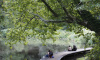 Ладожский парк в Красногвардейском районе благоустроят к середине октября